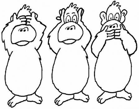 scimmiette